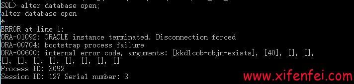 kkdlcob-objn-exists